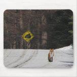 Fox rojo en cumbre tapete de raton
