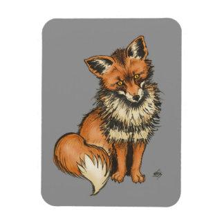 Fox rojo en fondo gris imanes de vinilo
