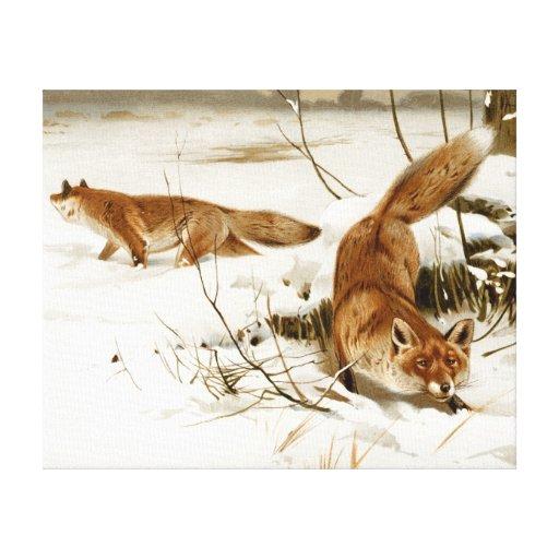 Fox rojo en invierno impresión en lona
