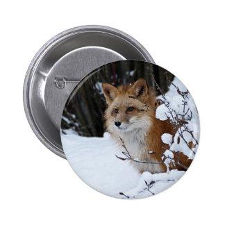 Fox rojo en la nieve pin redondo 5 cm