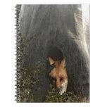 Fox rojo en regalos y ropa de un árbol libro de apuntes con espiral