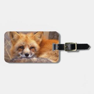 Fox rojo etiquetas para maletas