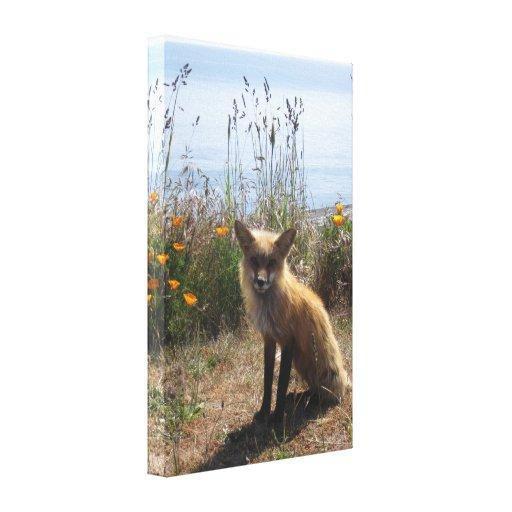 Fox rojo impresiones en lona