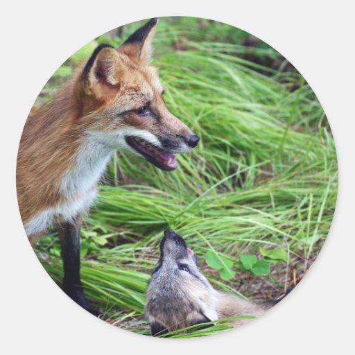 Fox rojo - ¡Míreme!!!! Pegatina Redonda