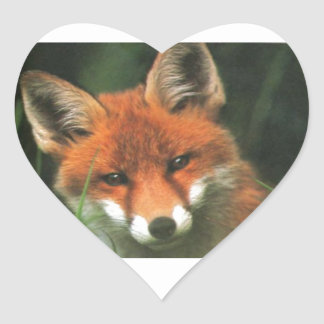 Fox rojo calcomania corazon