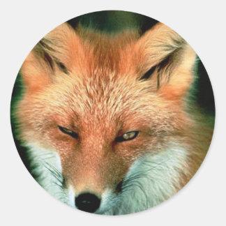 Fox rojo pegatina redonda