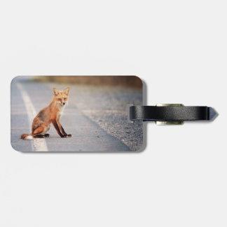 Fox rojo que se sienta en el lado del camino etiquetas de equipaje