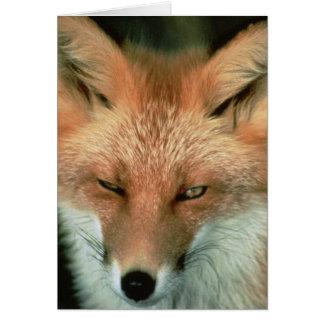 Fox rojo tarjeta de felicitación