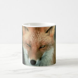Fox rojo taza básica blanca