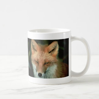 Fox rojo taza