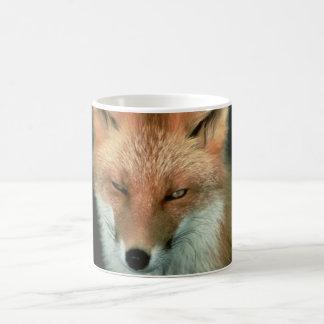 Fox rojo taza clásica