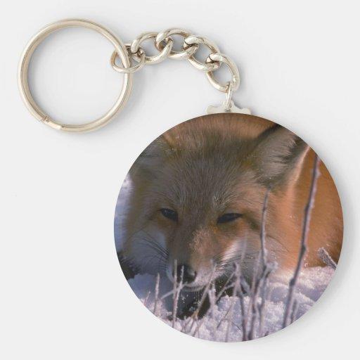 Fox rojo (tiro principal) llaveros personalizados