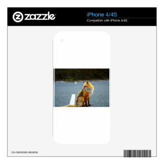Fox Side View iPhone 4S Decal