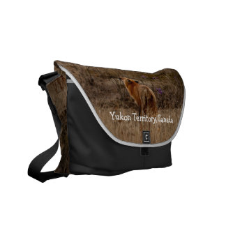 Fox Sniffing the Crocuses; Yukon Souvenir Courier Bag