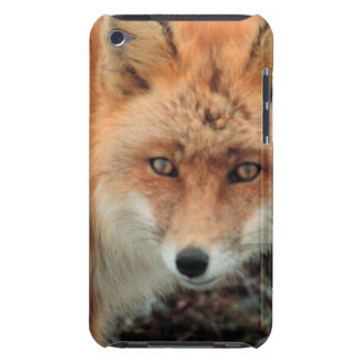 Fox Species iTouch Case iPod Touch Case-Mate Case