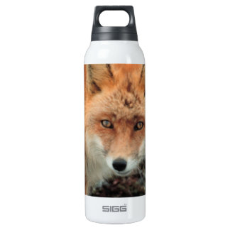Fox Species  SIGG Thermo 0.5L Insulated Bottle