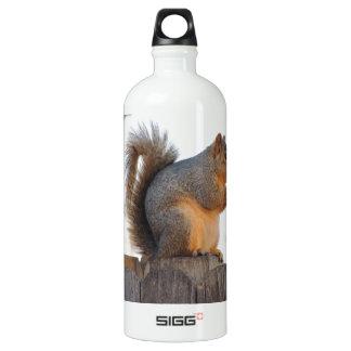 Fox Squirrel Aluminum Water Bottle