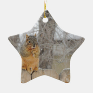 Fox Squirrel Ceramic Ornament