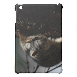 Fox Squirrel Close up iPad Mini Case
