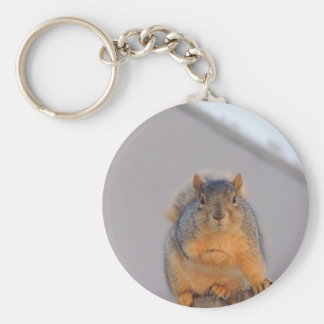 Fox Squirrel Keychain