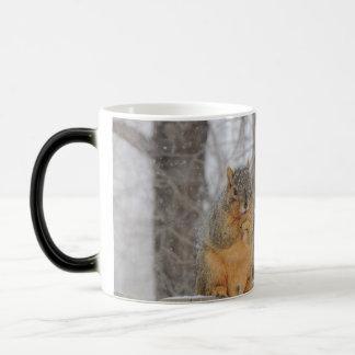 Fox Squirrel Magic Mug