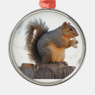 Fox Squirrel Metal Ornament