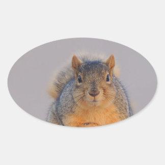Fox Squirrel Oval Sticker