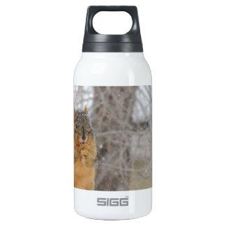 Fox Squirrel Thermos Water Bottle