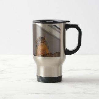 Fox Squirrel Travel Mug