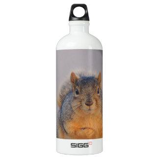Fox Squirrel Water Bottle
