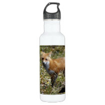 Fox Stainless Steel Water Bottle