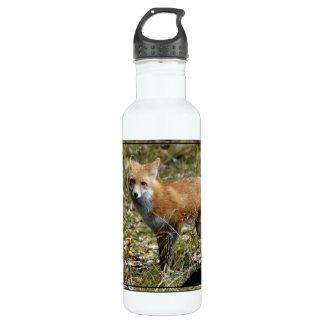 Fox Stainless Steel Water Bottle