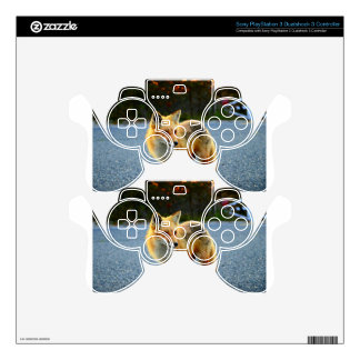 Fox Sunset Fence PS3 Controller Decal