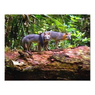 "FOX TAIL BRUNCH) 4.25"" X 5.5"" INVITATION CARD"