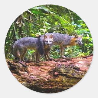 FOX TAIL BRUNCH) CLASSIC ROUND STICKER