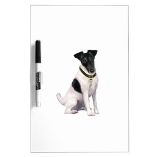 Fox Terrier (A) - Smooth - black-white Dry-Erase Boards