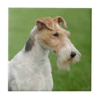 Fox terrier azulejo cuadrado pequeño