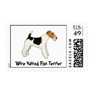 Fox terrier cabelludo del alambre sello postal