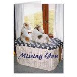 Fox terrier de dos hilos en la ventana tarjeta pequeña
