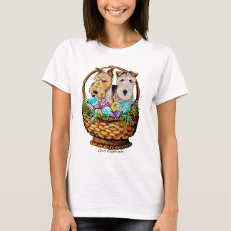 Fox terrier de Pascua Playera