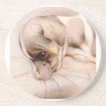 ¡Fox terrier del bebé - LINDO ESTUPENDO! Posavasos Personalizados