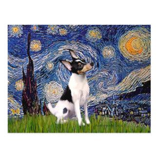 Fox terrier del juguete - noche estrellada postales