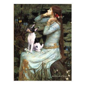 Fox terrier del juguete - Ofelia asentada Postal