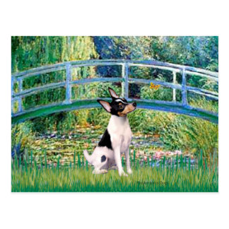 Fox terrier del juguete - puente tarjetas postales