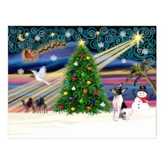 Fox terrier del Magia-Juguete de Navidad Postales