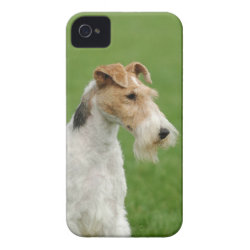 Case-Mate iPhone 4 Barely There Universal Case with Wire Fox Terrier Phone Cases design