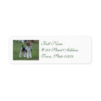Fox Terrier Label
