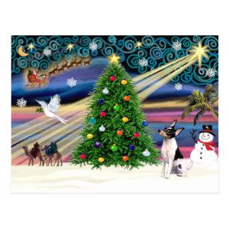 Fox terrier mágico del juguete del navidad tarjetas postales