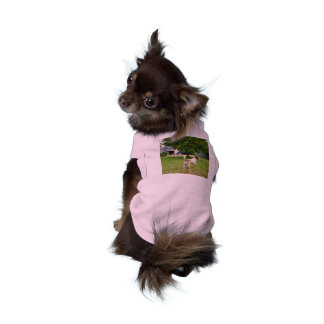 Fox_Terrier,_Playtime_Pink_Ribbed_Pet_Coat Shirt