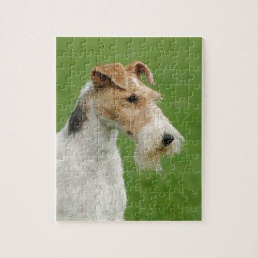 Fox terrier puzzles con fotos